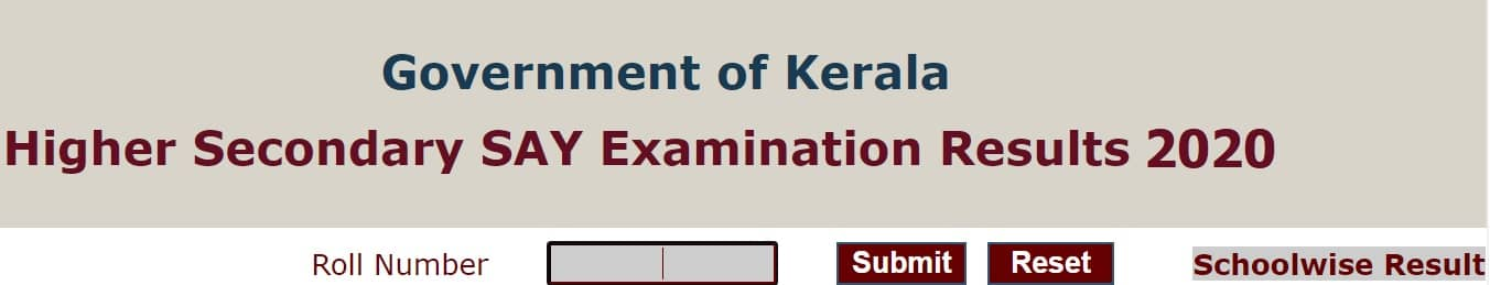 Kerala Higher Secondary SAY Results 2020